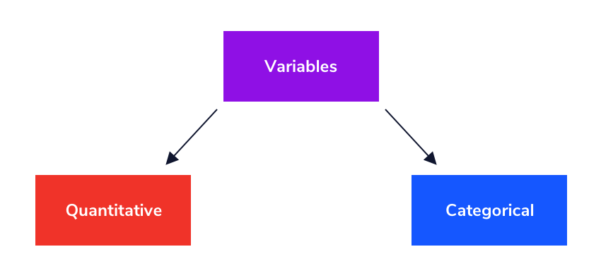 Image showing that variables can be either quantitative or categorical.