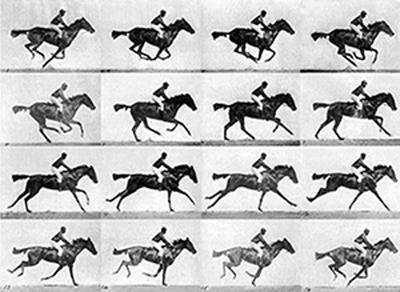 Eadweard Muybridge horse frames