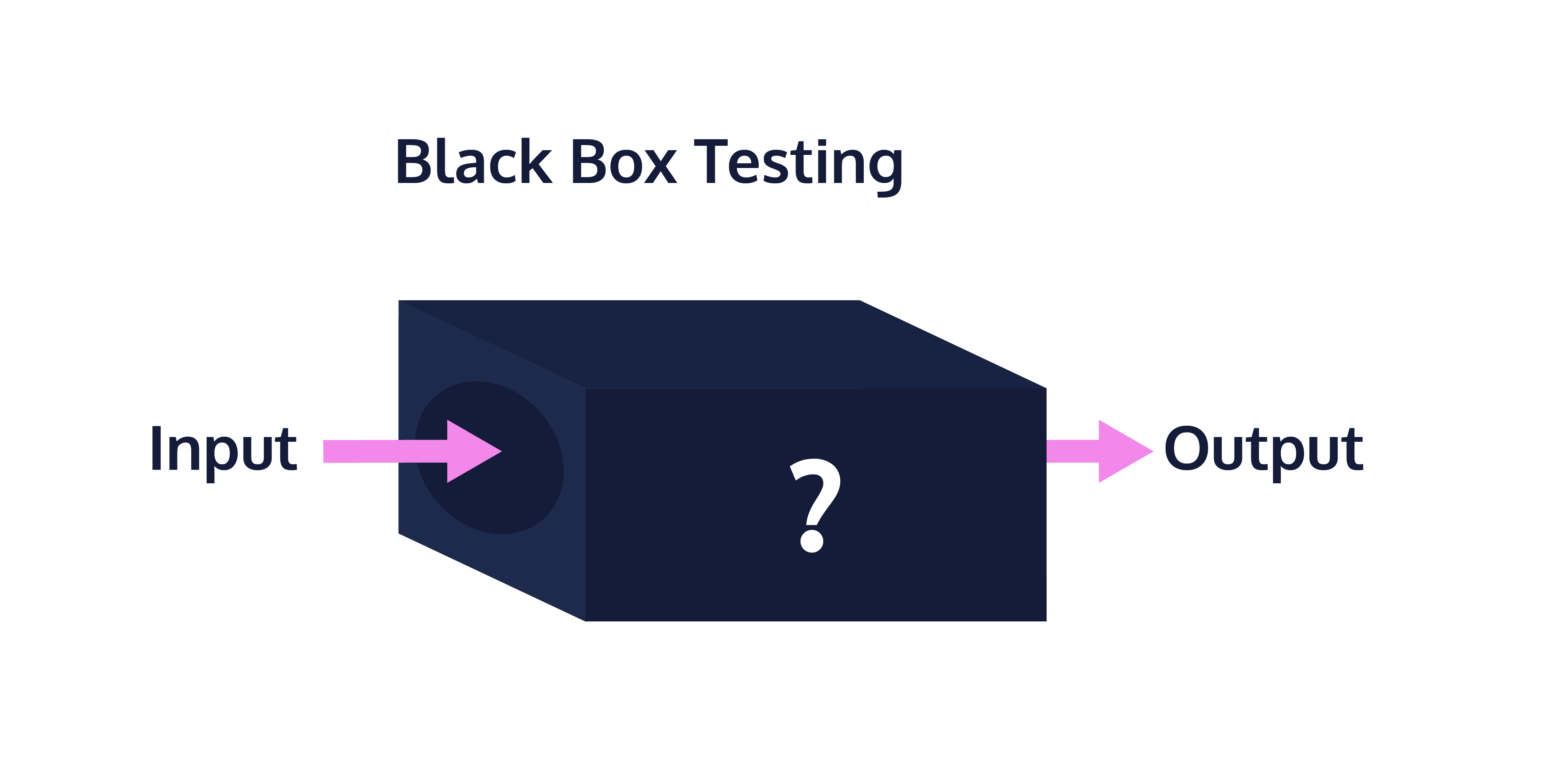 Image of a black box - input goes into a black box and output comes out.